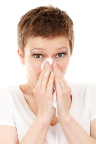 Indoor Allergens Sneeze